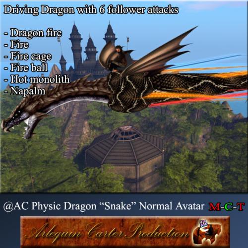 CV-Dragon-Snake