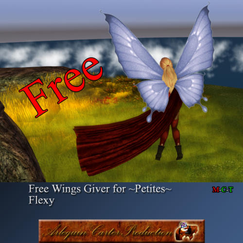 Free-Ailes-petites-giver