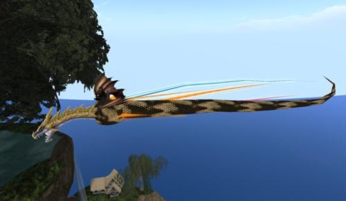 Physic-Dragon 014